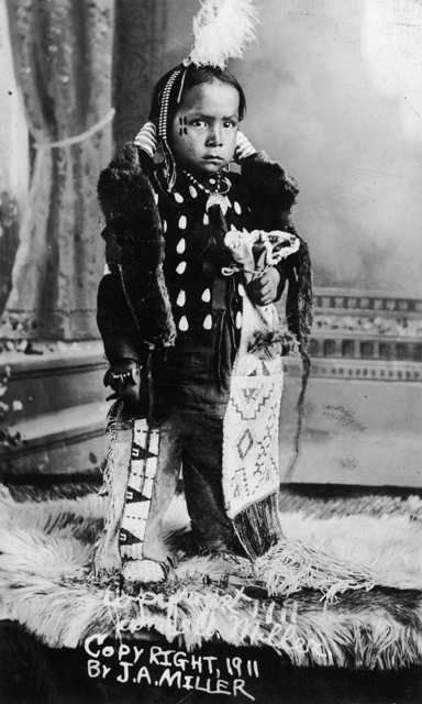 YOUNG WHITE BULL , 1911