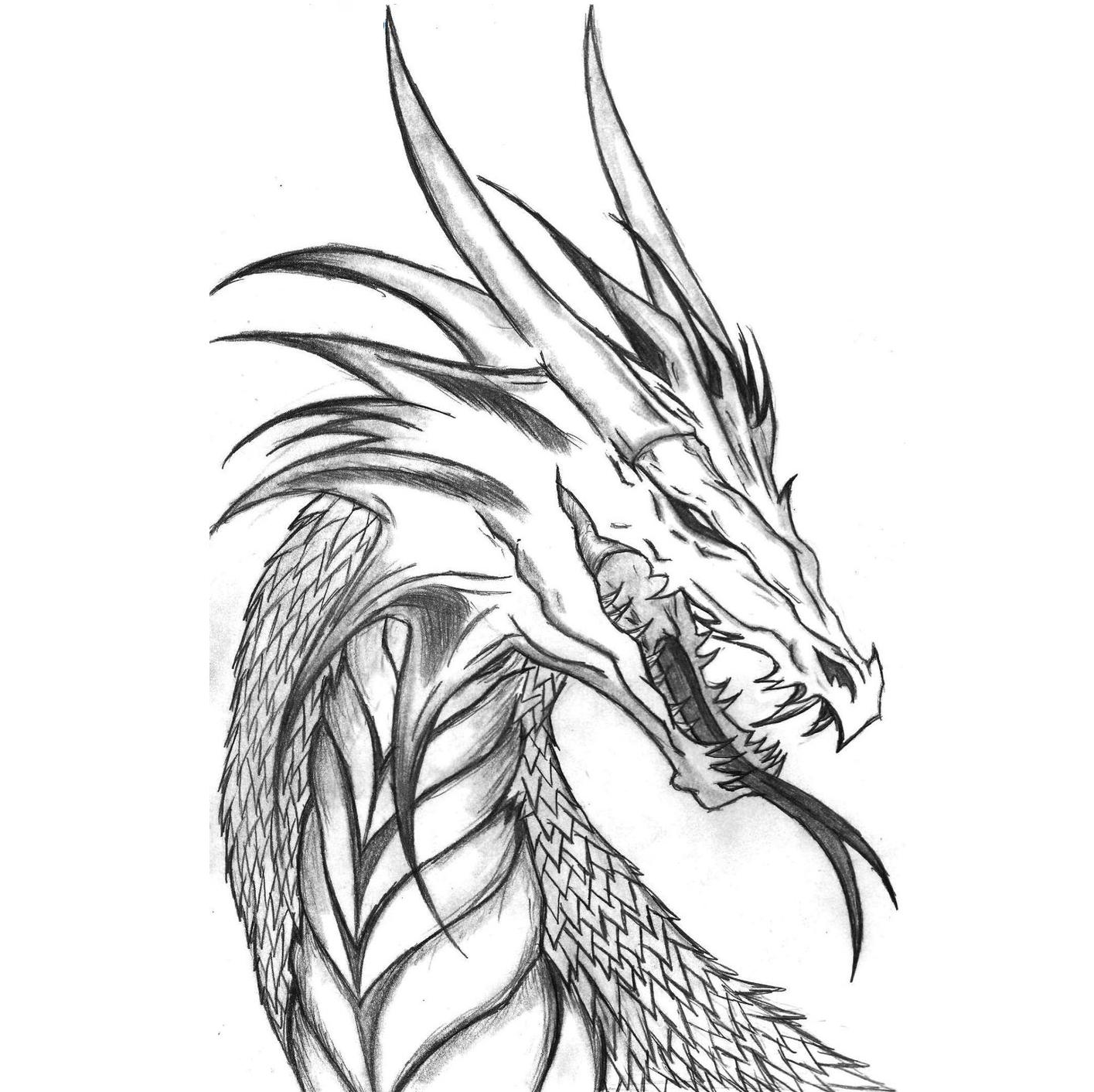 Un Dragon Hecho A Lapiz Dragones Arte Contemporaneo Dibujos