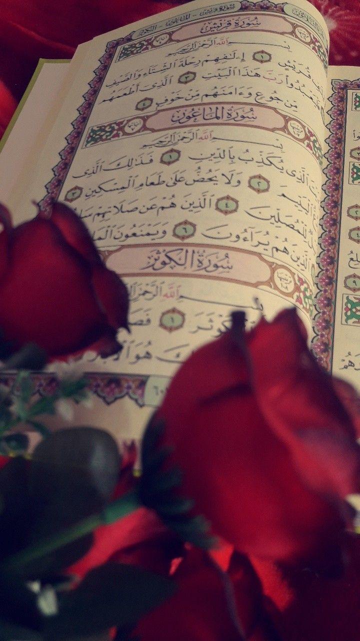 مولد فاطمه الزهراء عليها آڵس ـ ـ ڵٱم Beautiful Rose Flowers Cute Wallpaper Backgrounds Beautiful Roses