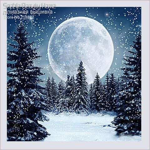 [EBay] 3D Diy Diamond Mosaic Diamond Embroidery Beads Celestial Snow Moon Woman Dream Diamonds Cross Stitch Oil Painting…