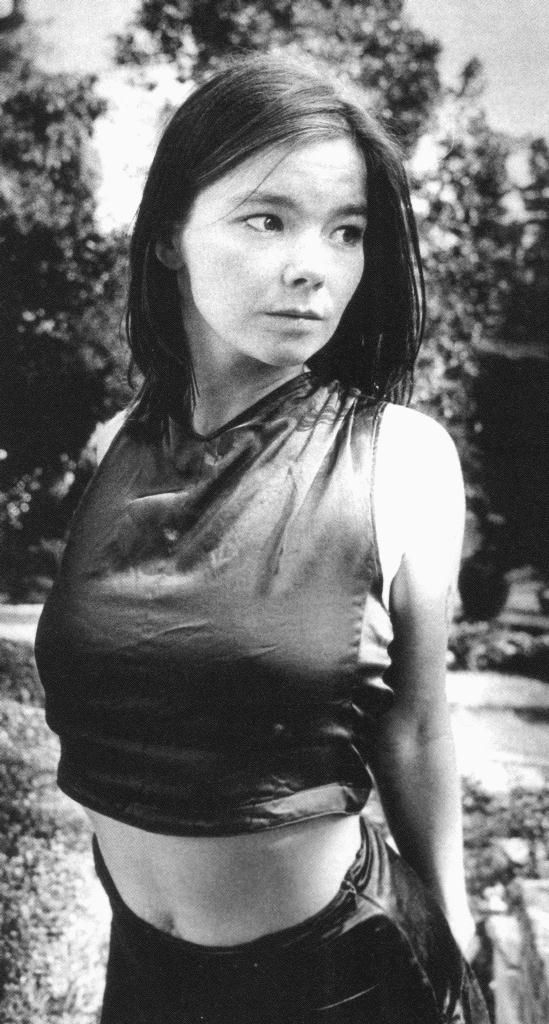 Pin By Chris Duda On Musicians Worth Caring About Bjork Bjork