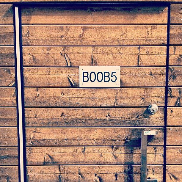 B00B5 yeah boobs, but also a beautiful door