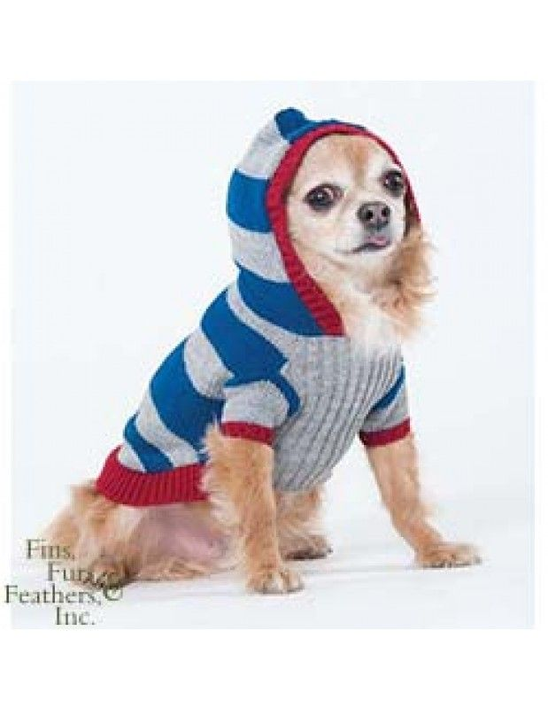 Fashion Pet (Ethical) Collegiate Striped Sweater Blue X-Small   #pets #dog #fashion petstore.com