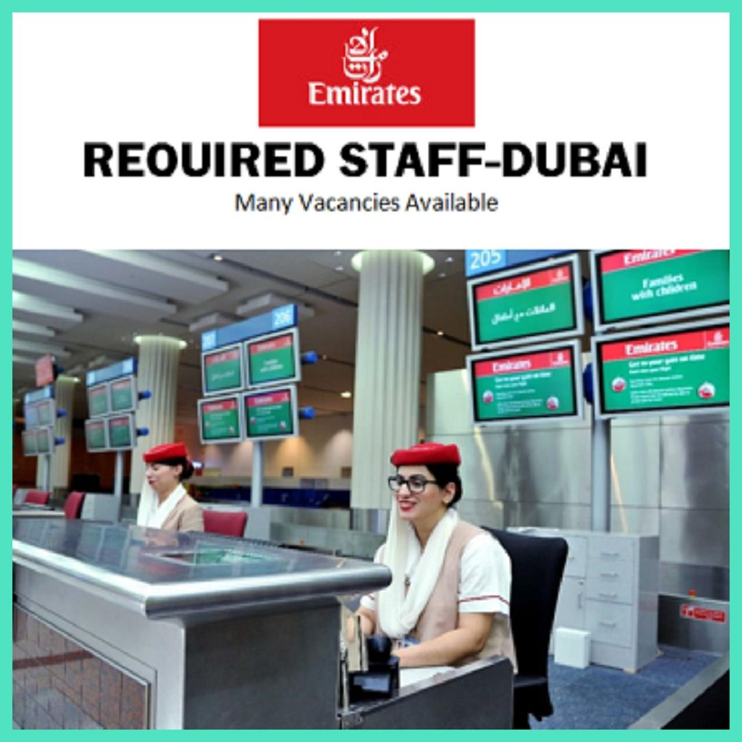 Emiratesgroup Of Companies Are Hiring New Staffs Check Current Openings And Apply Online Dubai Job Job Seeker