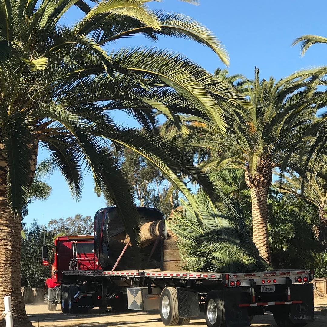 Landscaping Jobs Near Me 2020 Landscaping jobs, Canary