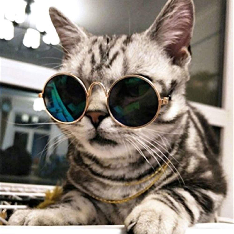 Hndygoods Stylish Pet Sunglasses Original Classic Retro Circular Metal Prince Sunglasses For Cats Or Small Dogs Pet Sunglasses Dog Sunglasses Cat Sunglasses