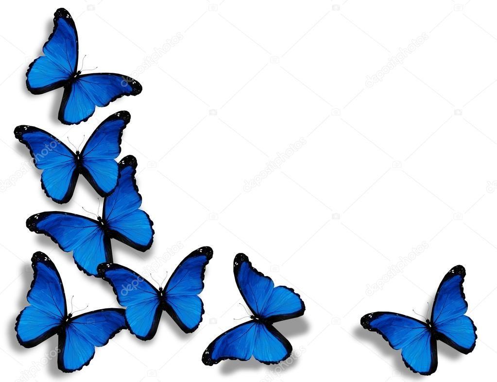 Resultado de imagen para mariposas emaus hombre mujer for Sfondi con farfalle