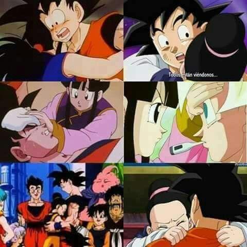 Goku Chi Chi Do You Love Me