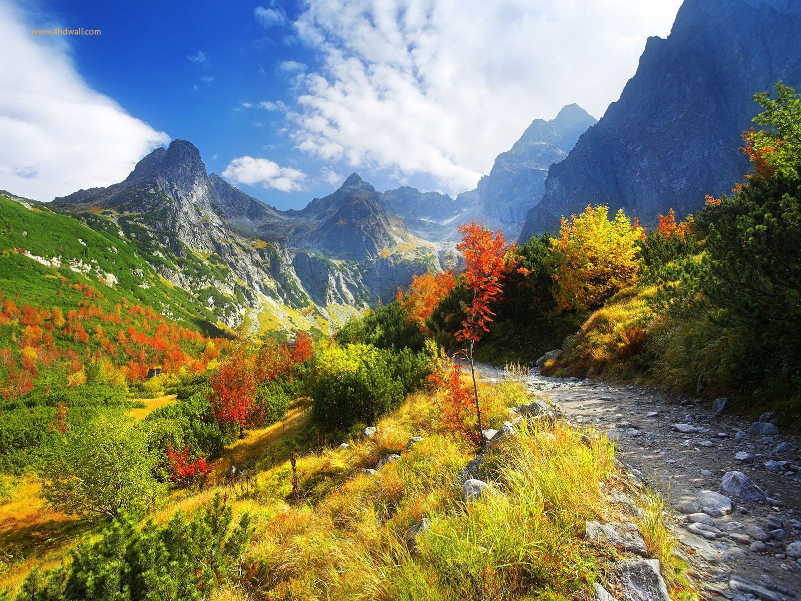 Very Beautiful Nature nature, definitions and wallpapers on pinterest