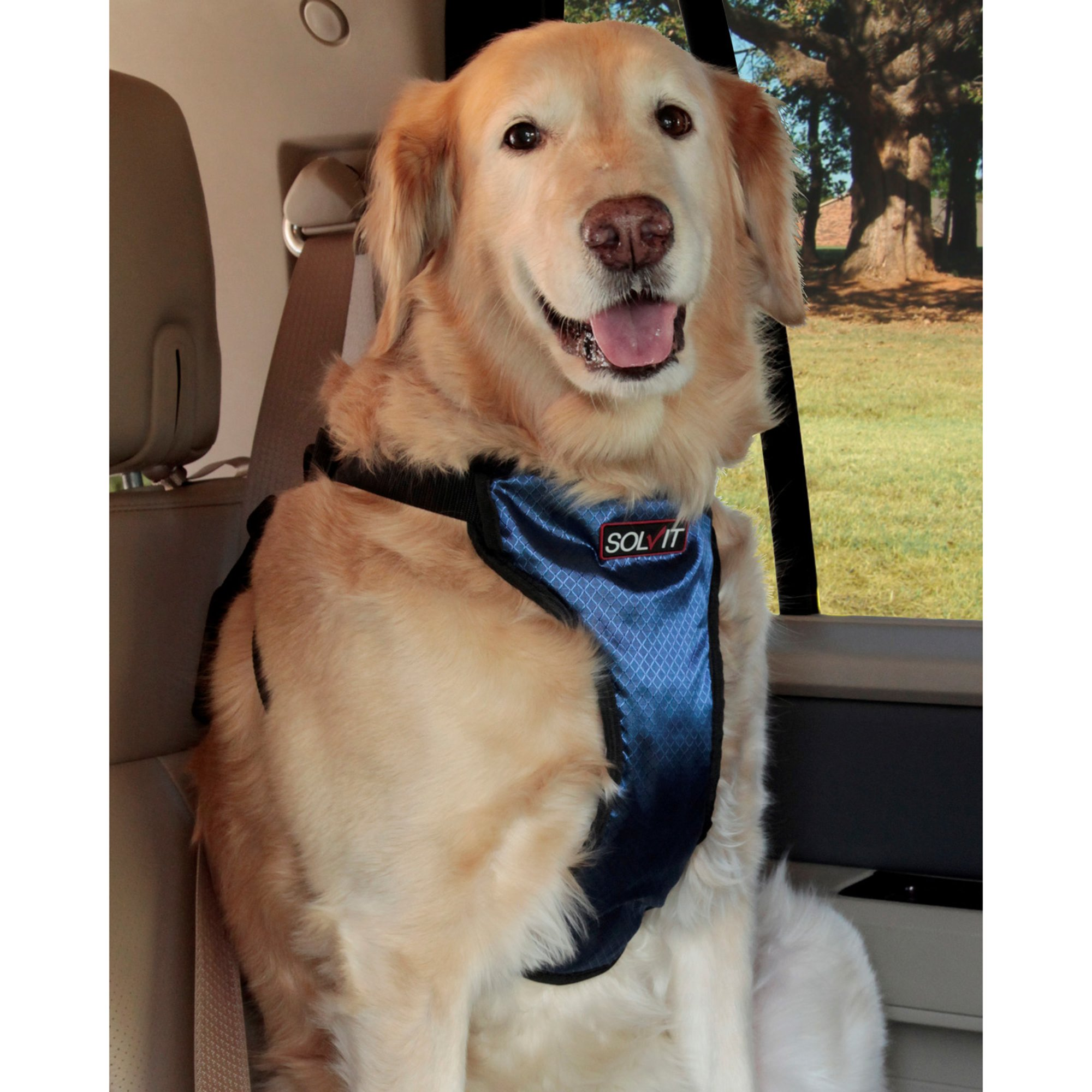 Petsafe Happy Ride Deluxe Safety Harness For Dogs X Large Dog Harness Dog Boarding Dog Safety Harness
