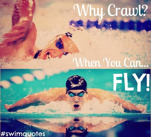 Swimming #fly   We Heart It   swimming   Swimming memes ...