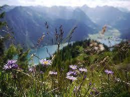 Tirol, Austria