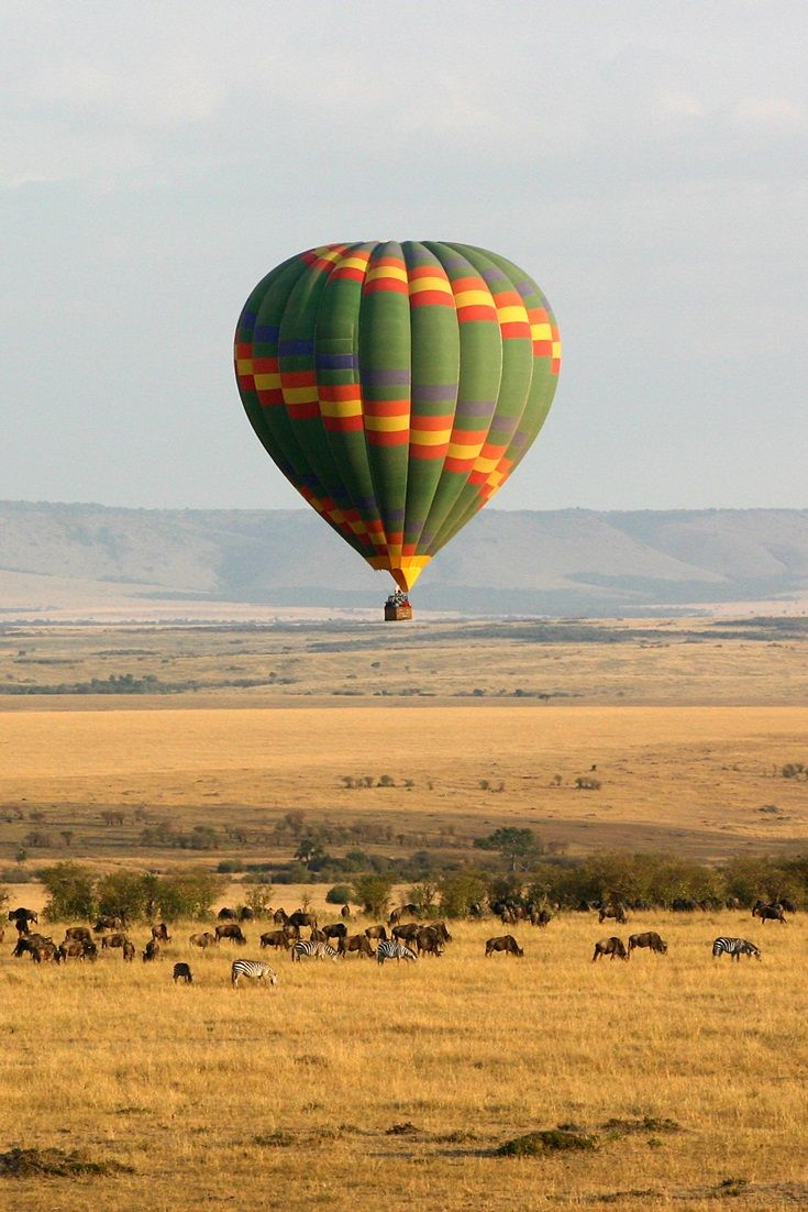 Kenya Kenya, Africa, Herd of elephants