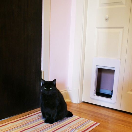hiding the litter box in a closet for our home design hiding cat litter box litter box cats. Black Bedroom Furniture Sets. Home Design Ideas