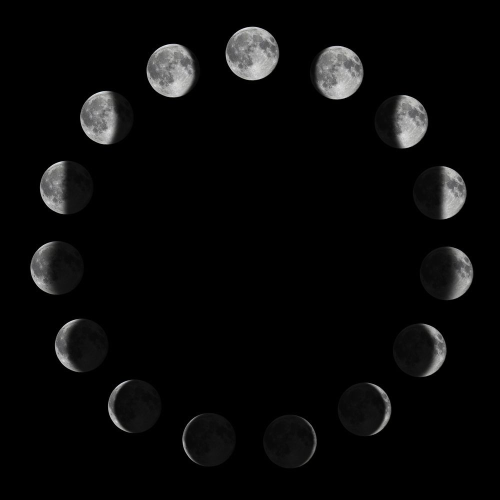 Phases of the Moon. Moon lunar cycle. Art Print by Allexxandarx ...