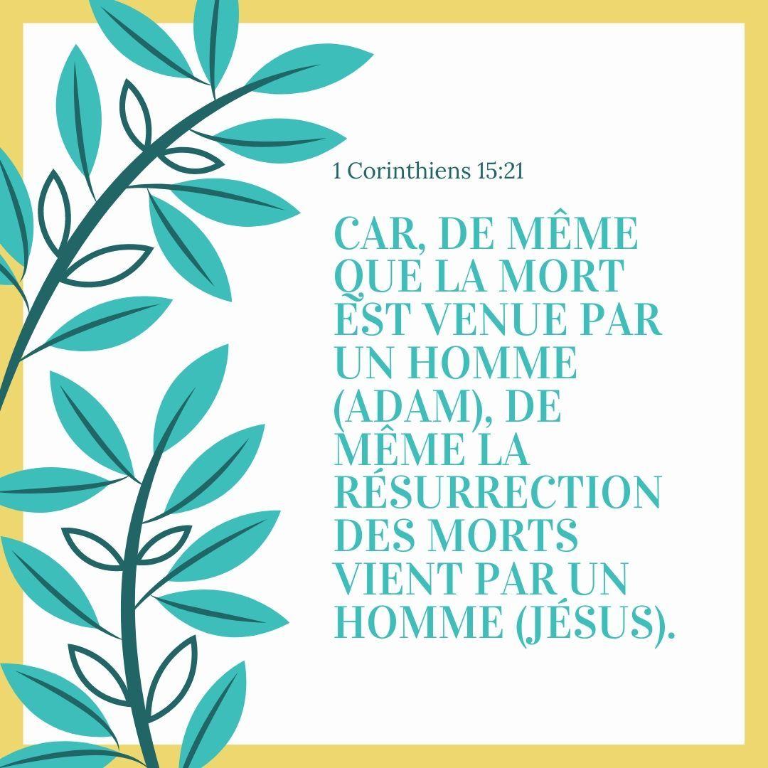 La Bible - Verset illustré - 1 Corinthiens 15:21 in 2020 | Bible, Home  decor decals