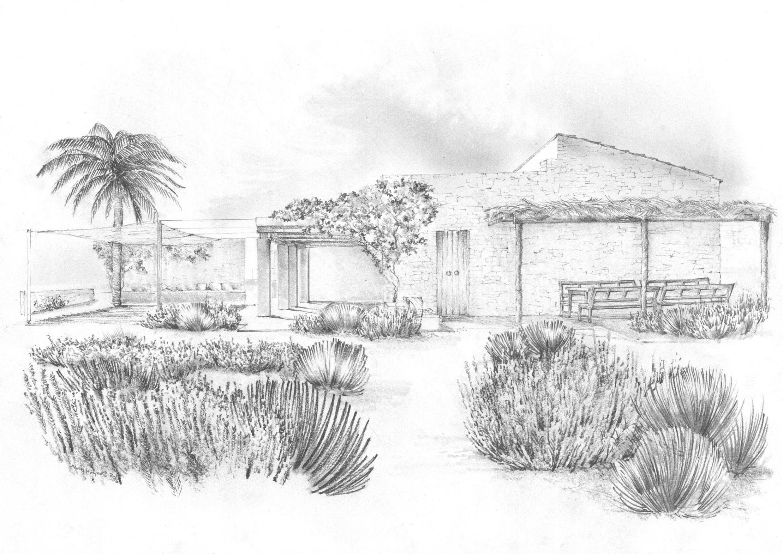 Luciano giubbilei formentera landscape drawings landscape illustration mediterranean garden pencil drawings