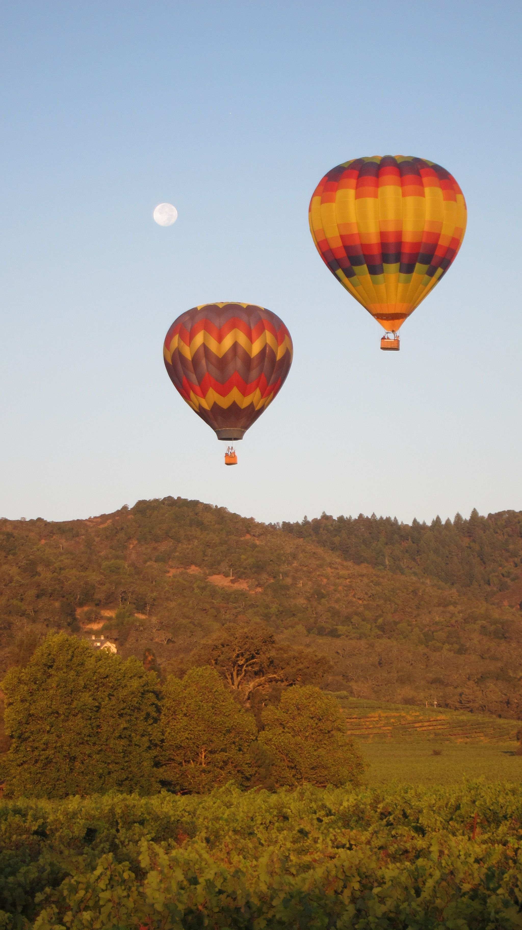 Hot air balloon ride over Napa/Sonoma Valley… AMAZING