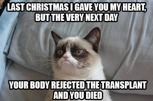 Last Christmas I Gave You My Heart Grumpy Cat Quotes Cat Quotes Funny Grumpy Cat Humor
