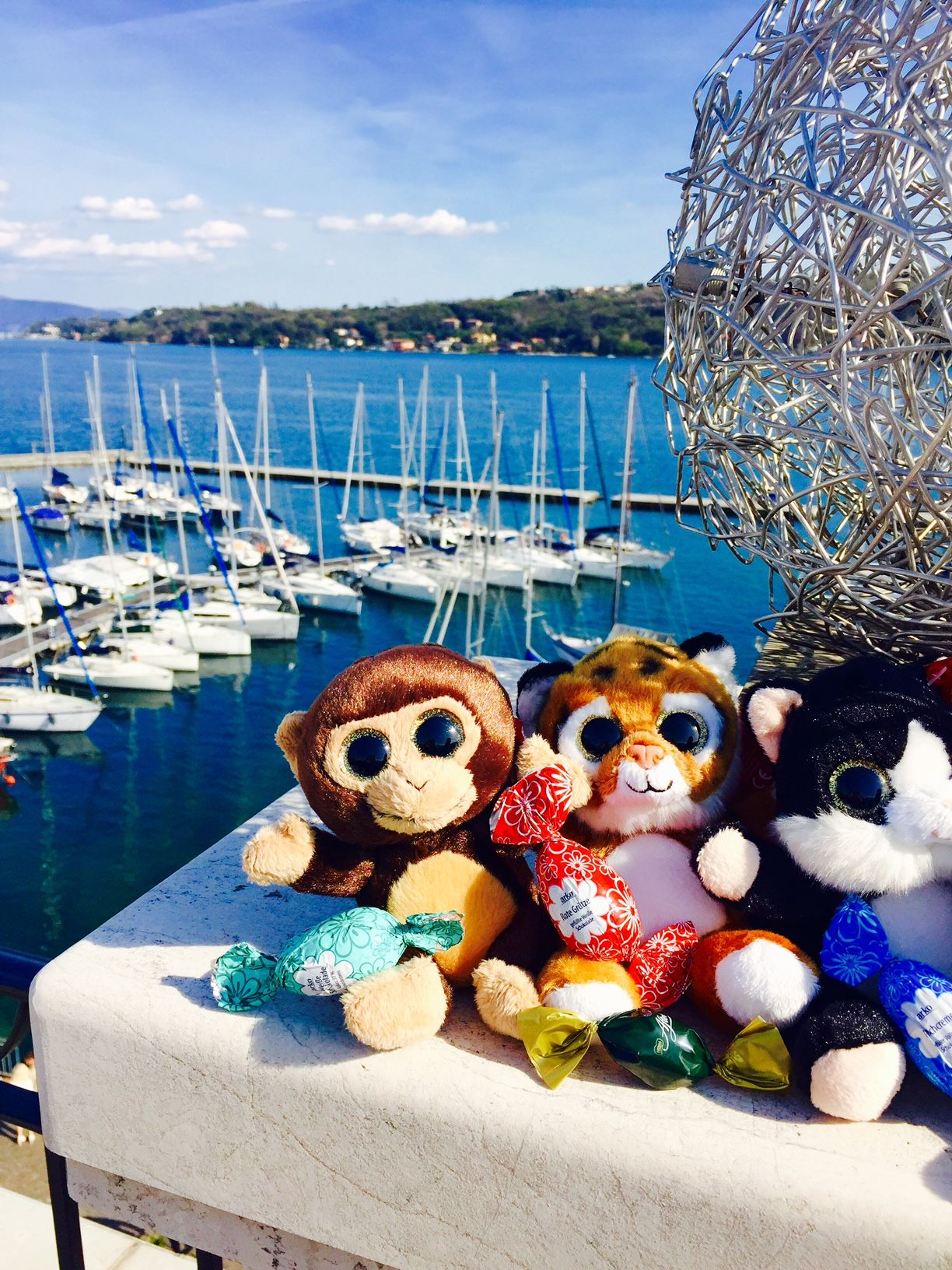 Our stuffed animals on the Rooftop