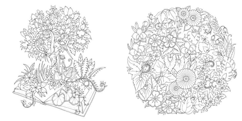 Selva Magica Johanna Basford Ilustracao 2