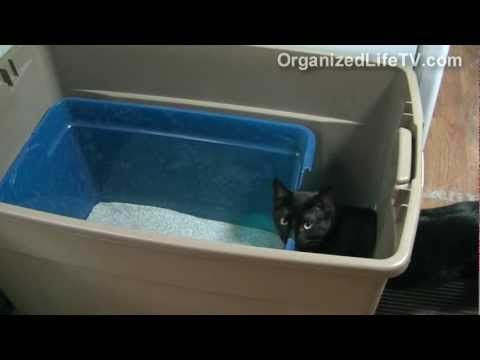 Custom Cat Litter Box Made Simple This Is Something I Think I Will Do Right Away While I Am Trying To Decide Which Automa Litter Box Cat Litter Diy Litter Box