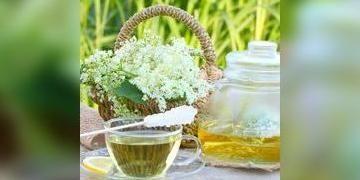 4 plantes anti-stress : valériane, mélisse, aubépine, rhodiole