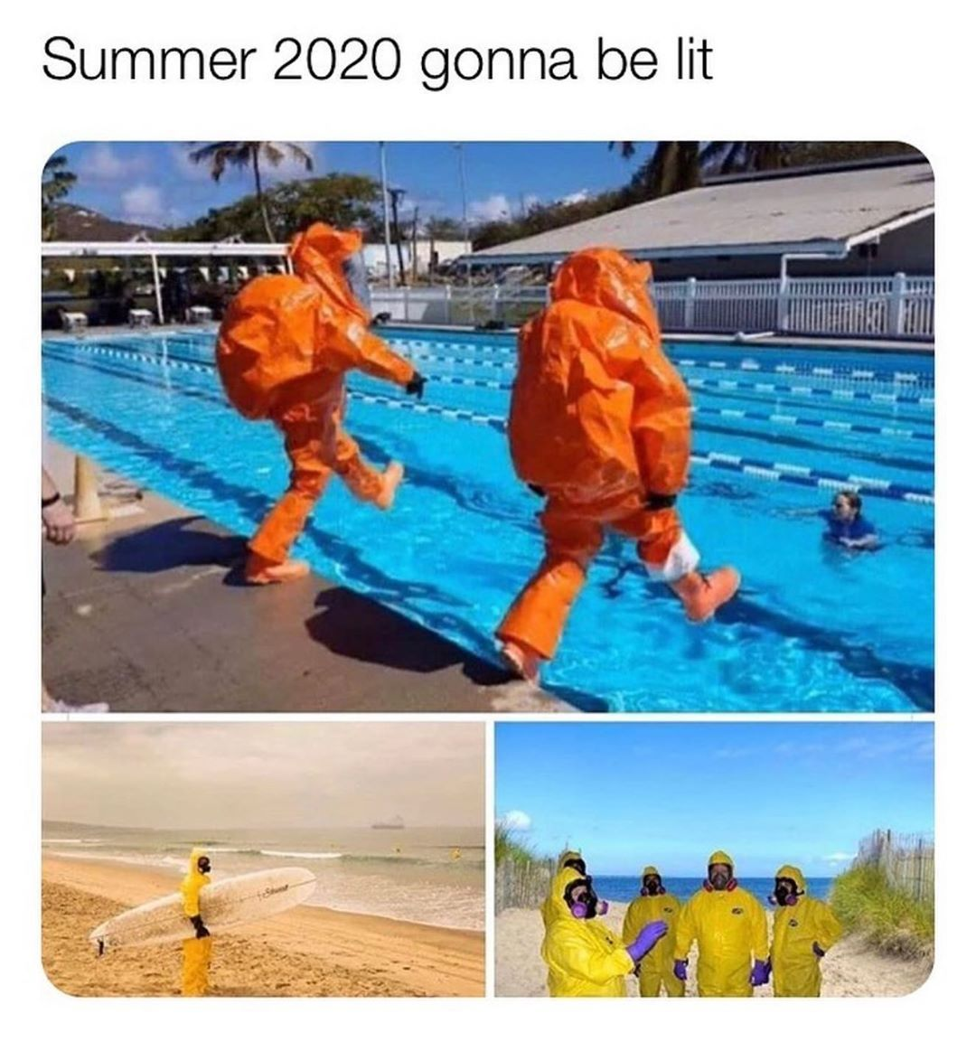 Pin by NO on good memes in 2020 Haha funny, Stupid funny