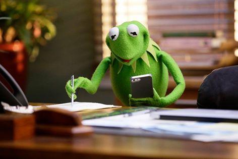 Kermit the Frog's photo.
