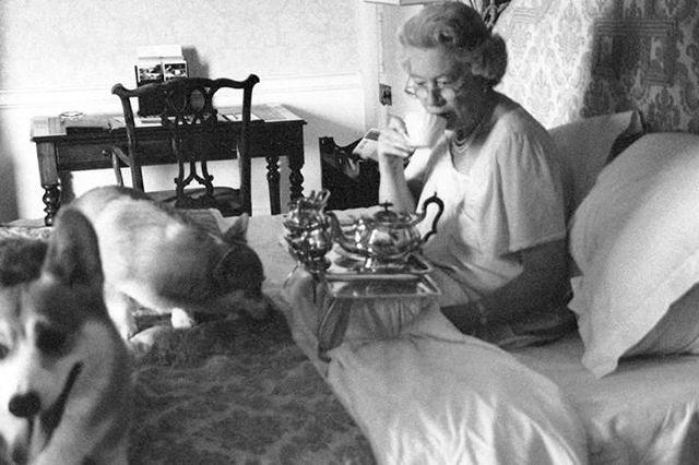 Queen Elizabeth enjoying breakfast in bed, accompanied by ...