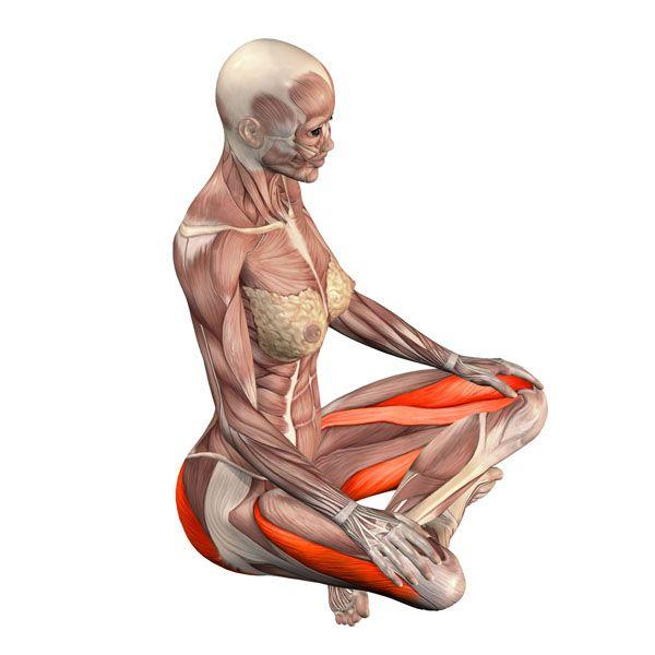 Easy pose - Sukhasana - Yoga Poses YOGA.com