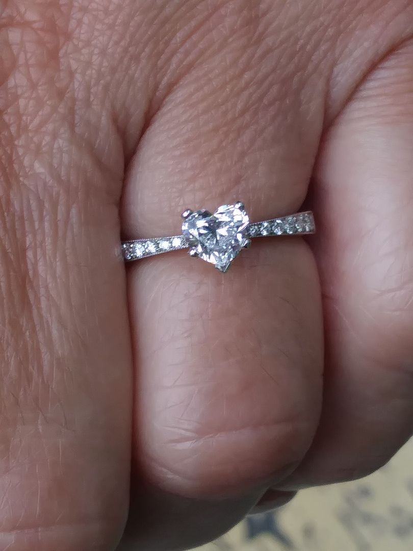 Perfect Pinch Pave Engagement Ring Setting Pave Engagement Ring Engagement Rings Engagement Ring Settings