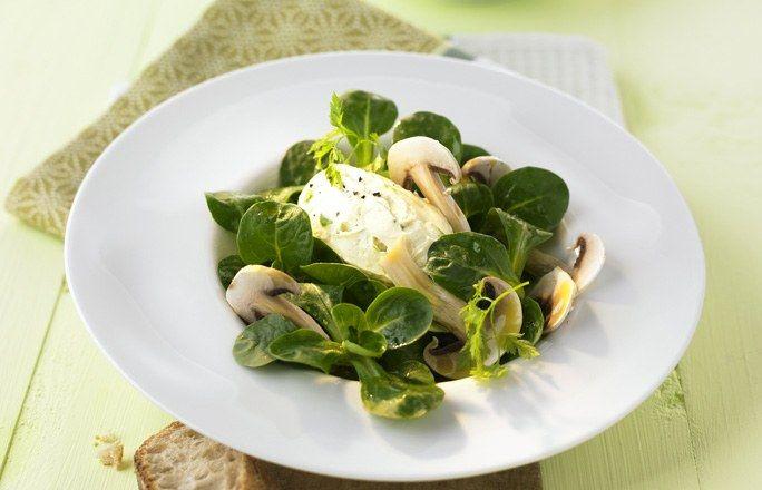 Feldsalat mit gehobelten Champignons und Frischkäsenocken - 8 schnelle Salate fürs Büro oder die Grillparty - Zutaten für 4 Portionen: - 120 g Feldsalat - 200 g Doppelrahm-Frischkäse - 2 TL abgeriebene Zitronenschale - Zitronenpfeffer - 3 Lauchzwiebeln - 1 TL Senf - 3 EL Weißweinessig...
