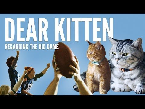Dear Kitten: Regarding The Big Game : Video Clips From The Coolest One