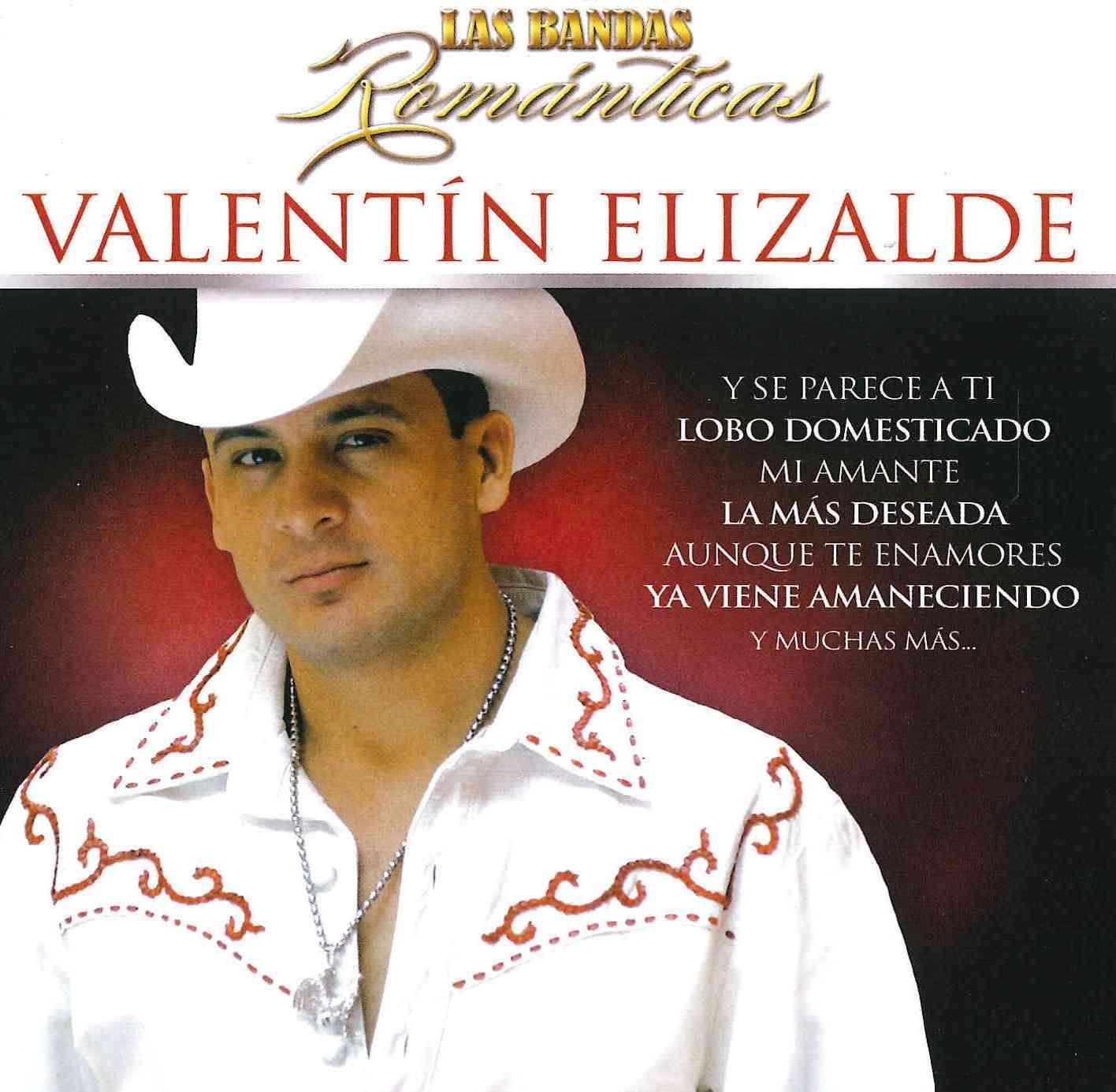 Perfekt Valentin Elizalde   Las Bandas Romanticas