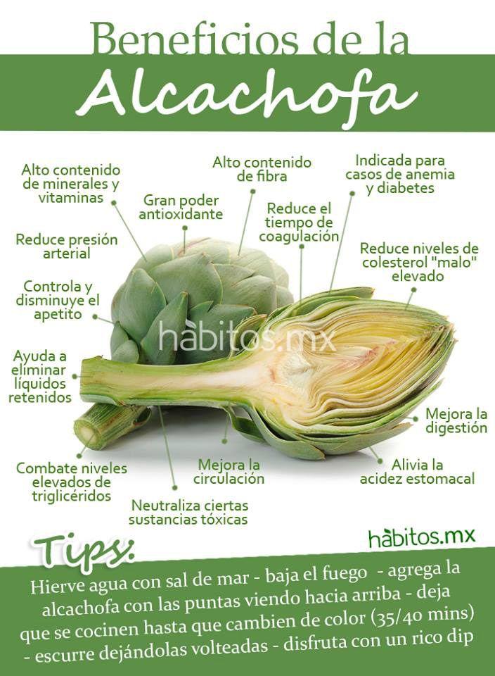 es buena la alcachofa para adelgazar