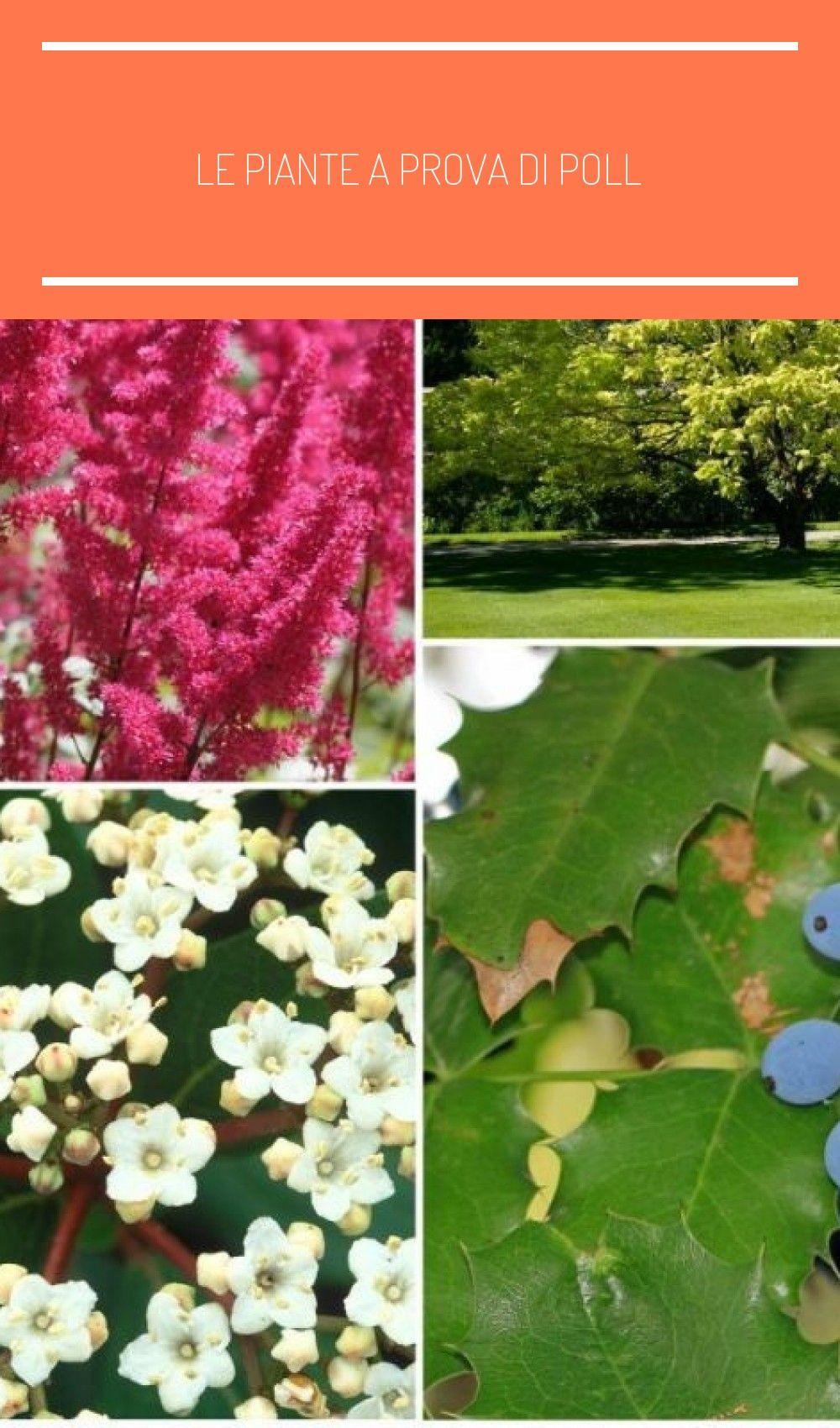 Fiori Da Giardino In Montagna le piante a prova di poll in 2020 | treble crochet stitch