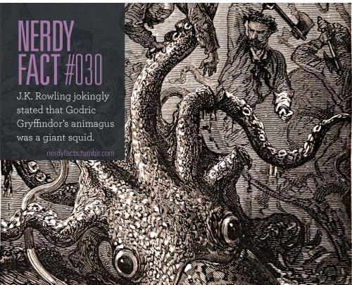 Nerdy Fact 030 J K Rowling Jokingly Stated That Godric Gryffindor S Animagus Was A Giant Squid Source Nerdy Facts Wtf Fun Facts