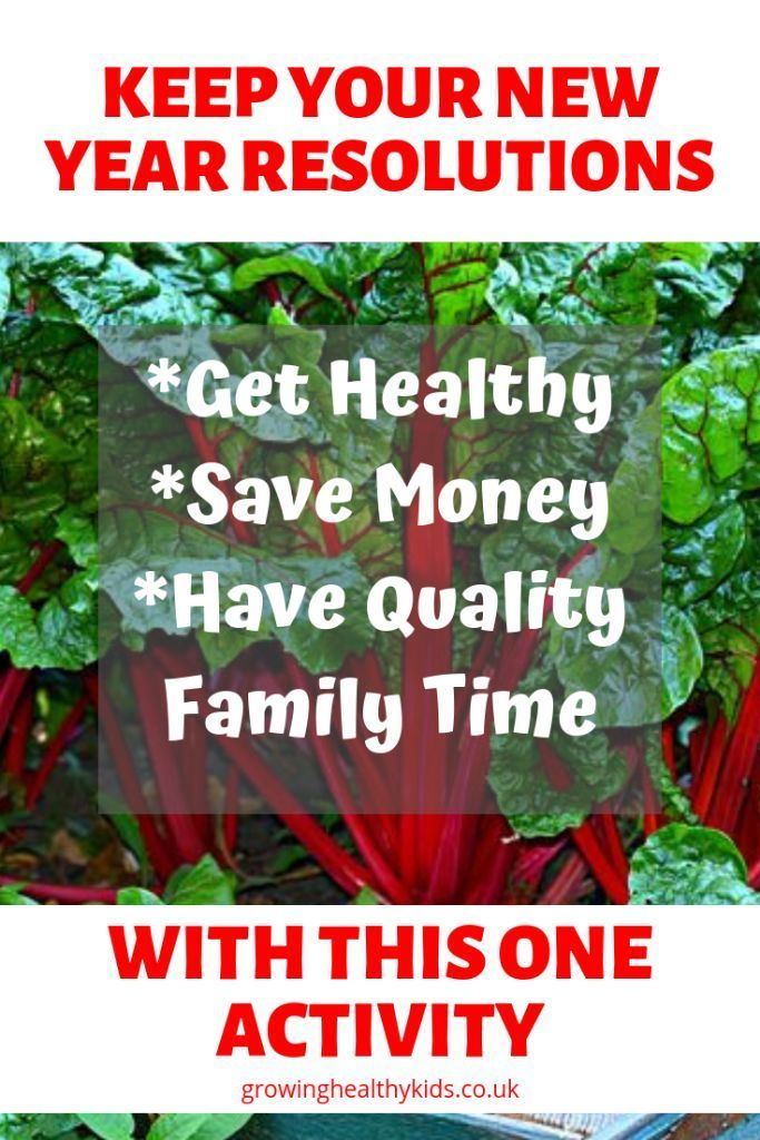 How To Get Fit With A Healthy Garden - Growing Healthy Kids