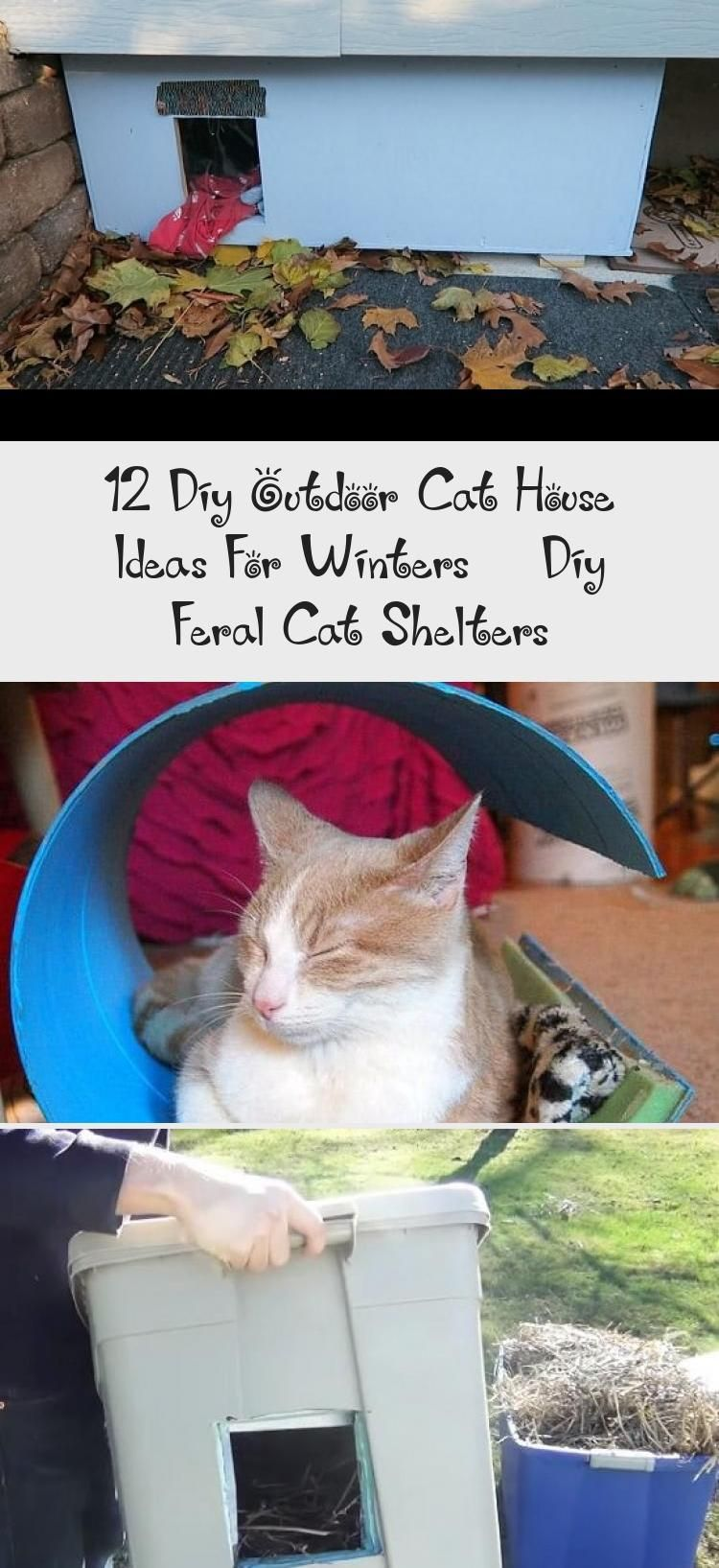 12 Diy Outdoor Cat House Ideas For Winters Diy Feral Cat