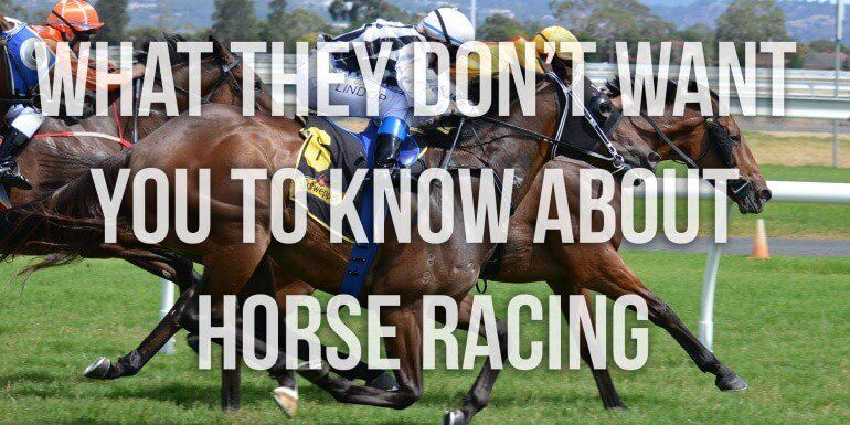 Everything You Need To Know About Horse Racing