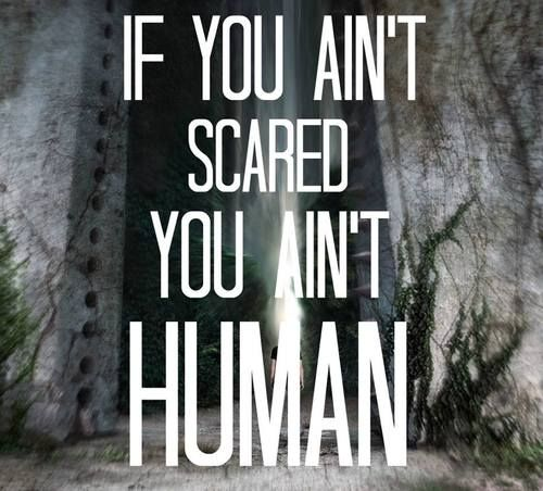 Maze Runner Quotes The Maze Runner Quotes  Google Search  Love Is Free  Pinterest .