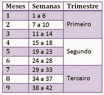 Correspondencia Meses Semanas Trimestres De Gestacao