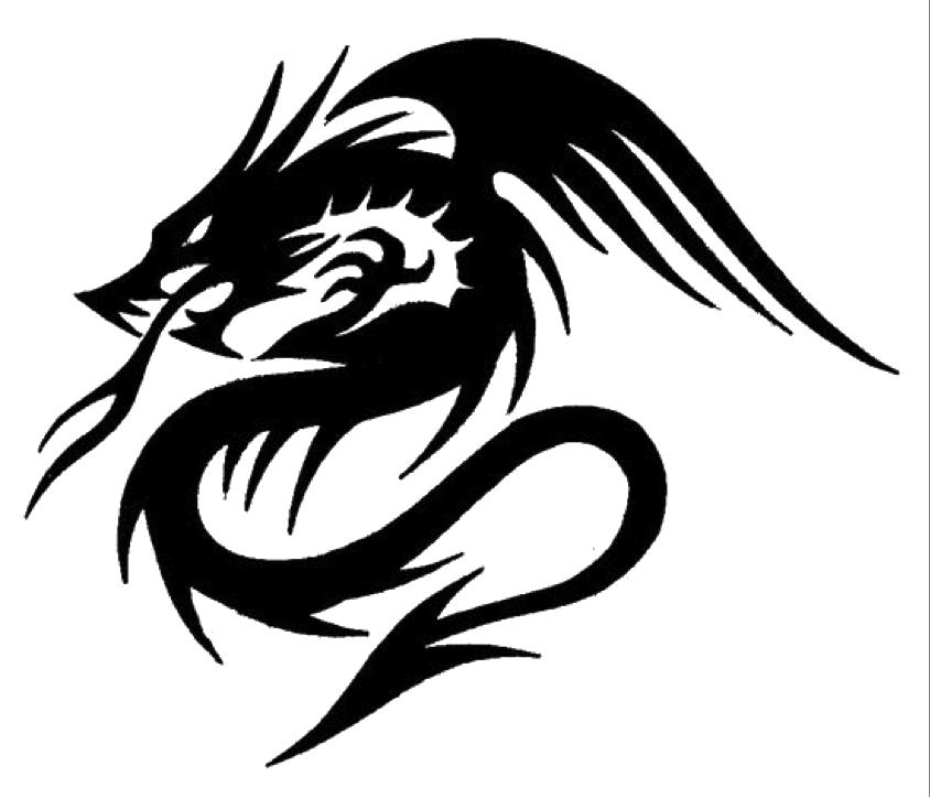 DragonTattoosPNG.png (844×724) Dragon tattoo, Nerd