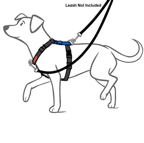 Balance No-Pull Harness: 6-Way Adjustable & Non