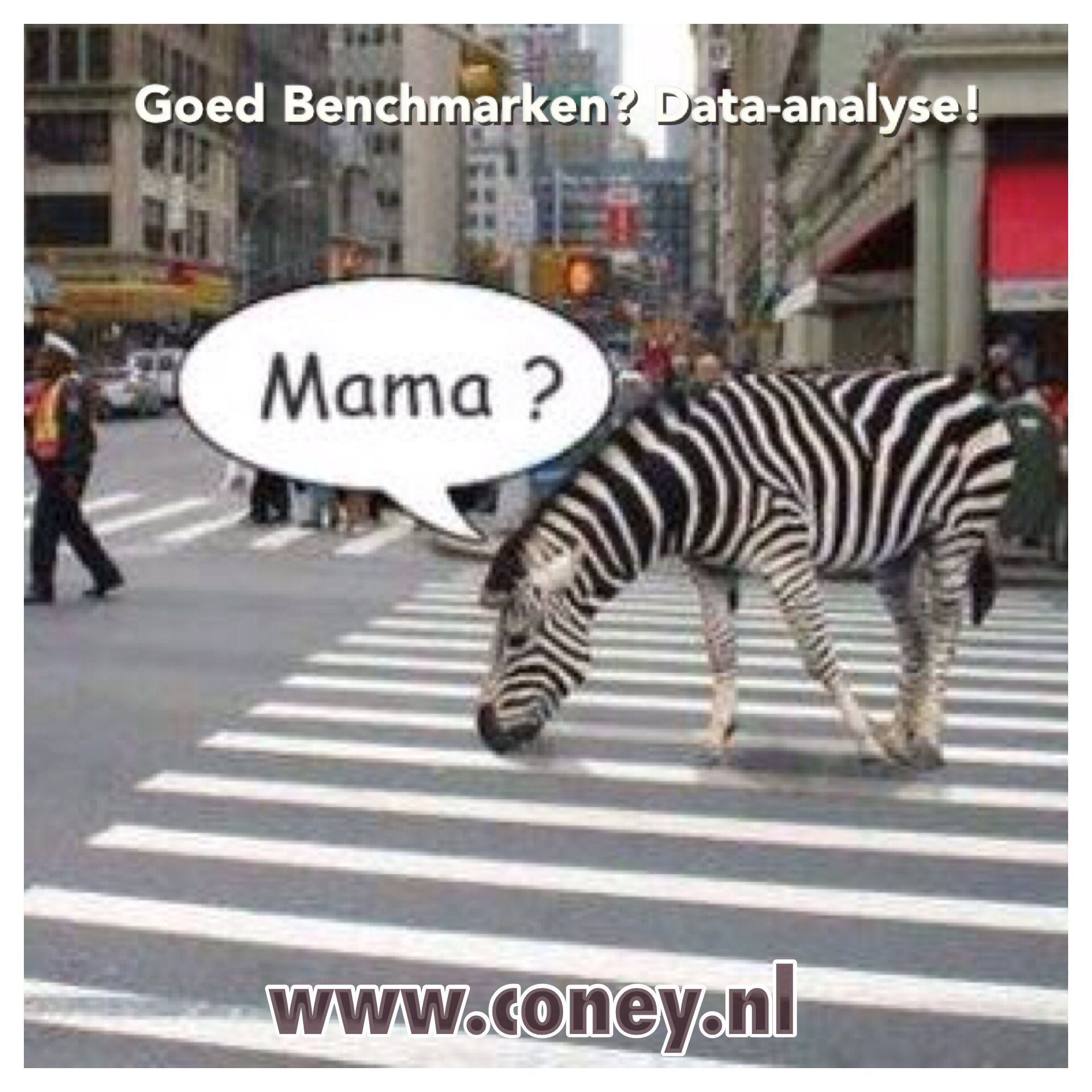 Benchmark, benchmarken, vergelijken, data-analyse, Coney