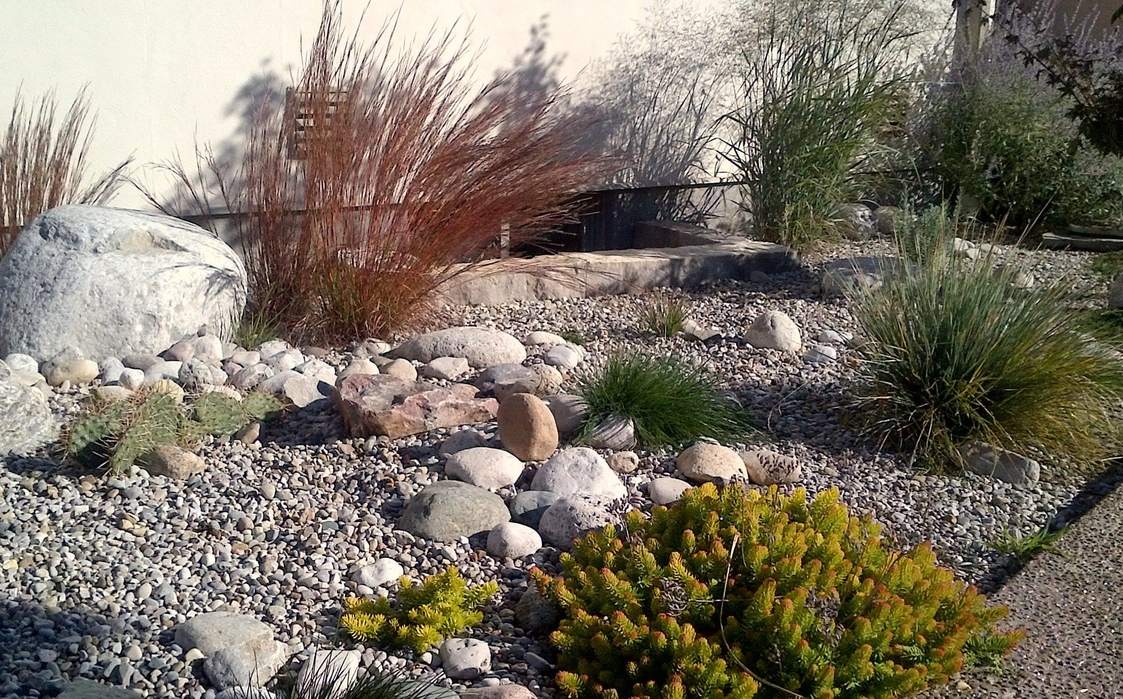california desert landscaping ideas | Sustainable landscape design ...