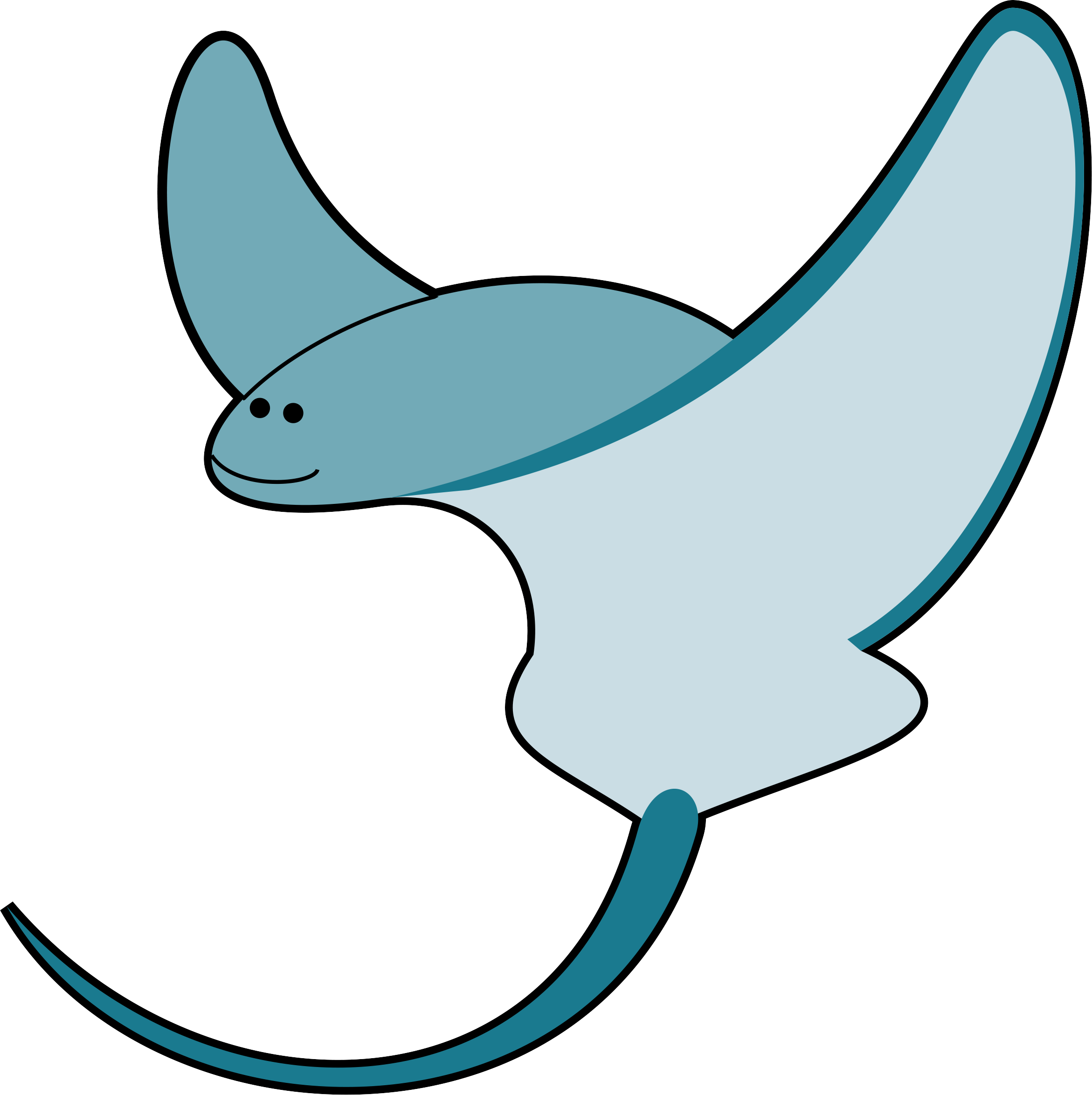 Sea Life Worksheet Ocean Animals