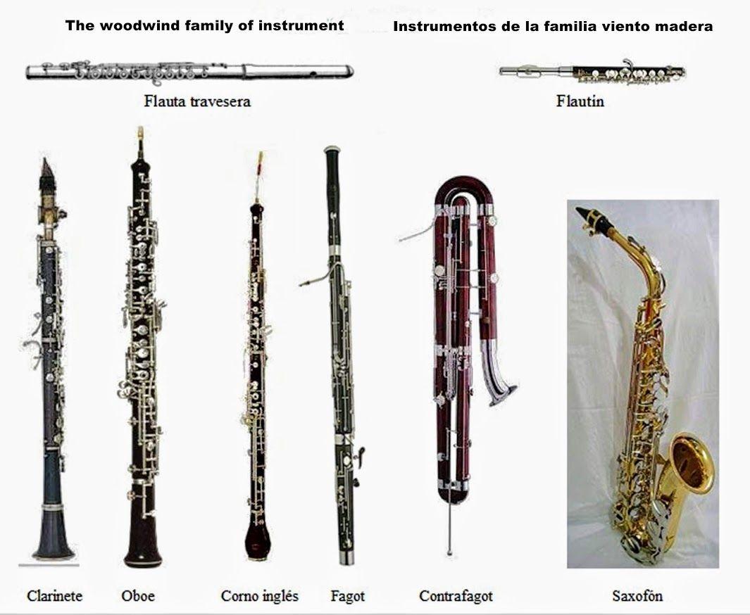 Foto Google Fotos Instrumentos Musicales Imagenes De Instrumentos Musicales Instrumentos De Viento