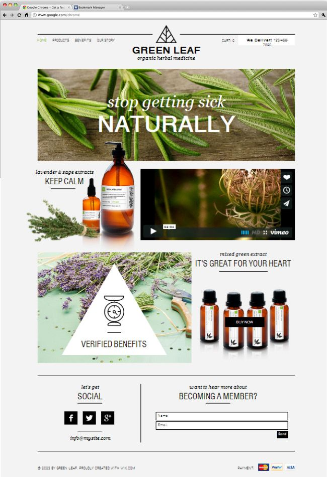 26 beautiful website templates for small businesses website design herbal shop friedricerecipe Choice Image